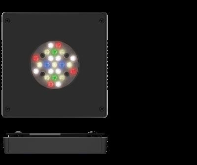 FW_SPECS_IMAGE.png.f615ddf13b12e675dc2ae2ea1bd4c6a5.png